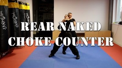 Rear Naked Choke Escape