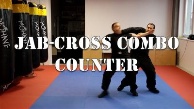 Jab-Cross Combo Counter