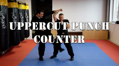 Uppercut Punch Counter