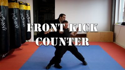 Front Kick Counter